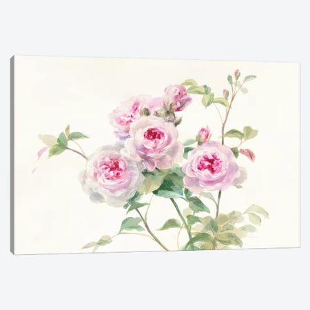 Sweet Roses On White Green Canvas Print #WAC8405} by Danhui Nai Canvas Artwork