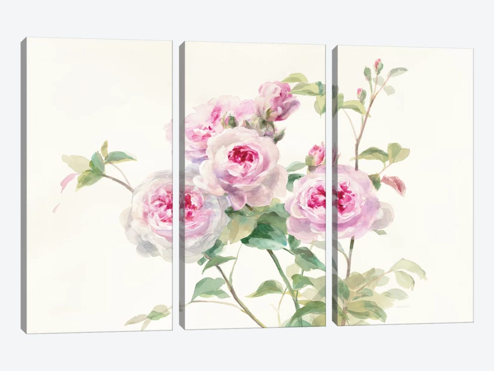 Sweet Roses On White Green by Danhui Nai 3-piece Canvas Print