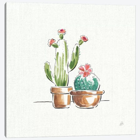 Desert Bloom IV Canvas Print #WAC8413} by Daphne Brissonnet Canvas Art