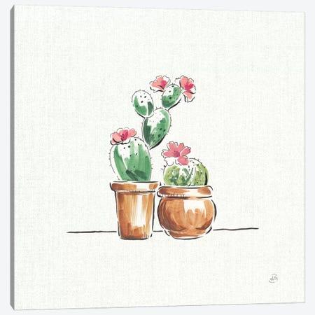 Desert Bloom VII Canvas Print #WAC8416} by Daphne Brissonnet Canvas Print