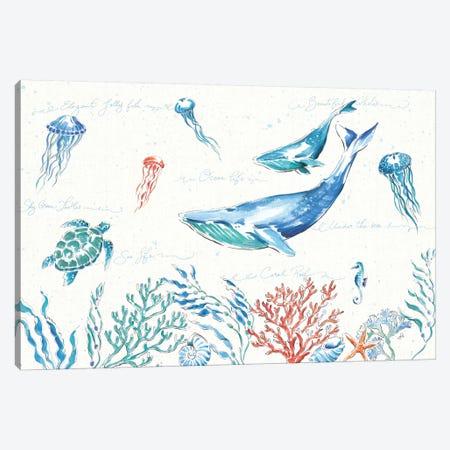 Maritime I Canvas Print #WAC8417} by Daphne Brissonnet Canvas Art Print