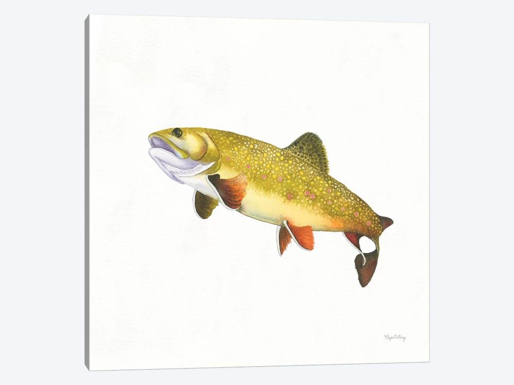 Gone Fishin': Brookie Trout by Elyse DeNeige 1-piece Canvas Artwork