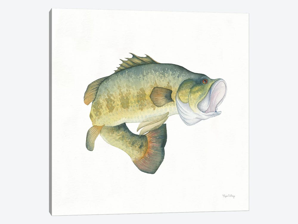 Gone Fishin': Large Mouth Bass 1-piece Canvas Print
