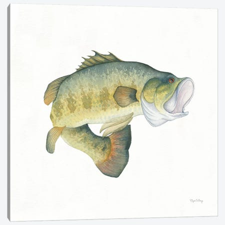 Gone Fishin': Large Mouth Bass 3-Piece Canvas #WAC8429} by Elyse DeNeige Canvas Print