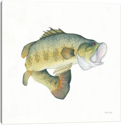 Gone Fishin': Large Mouth Bass Canvas Art Print
