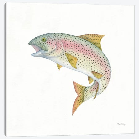 Gone Fishin': Rainbow Trout Canvas Print #WAC8430} by Elyse DeNeige Canvas Art
