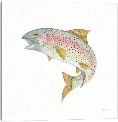 Gone Fishin': Rainbow Trout Canvas Art Print