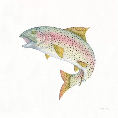 Rainbow trout fish inspired pi\u00f1ata New Handmade