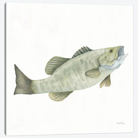 Gone Fishin': Small Mouth Bass Canvas Print #WAC8431} by Elyse DeNeige Canvas Art