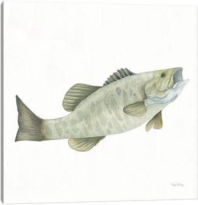 Gone Fishin': Small Mouth Bass Canvas Art Print