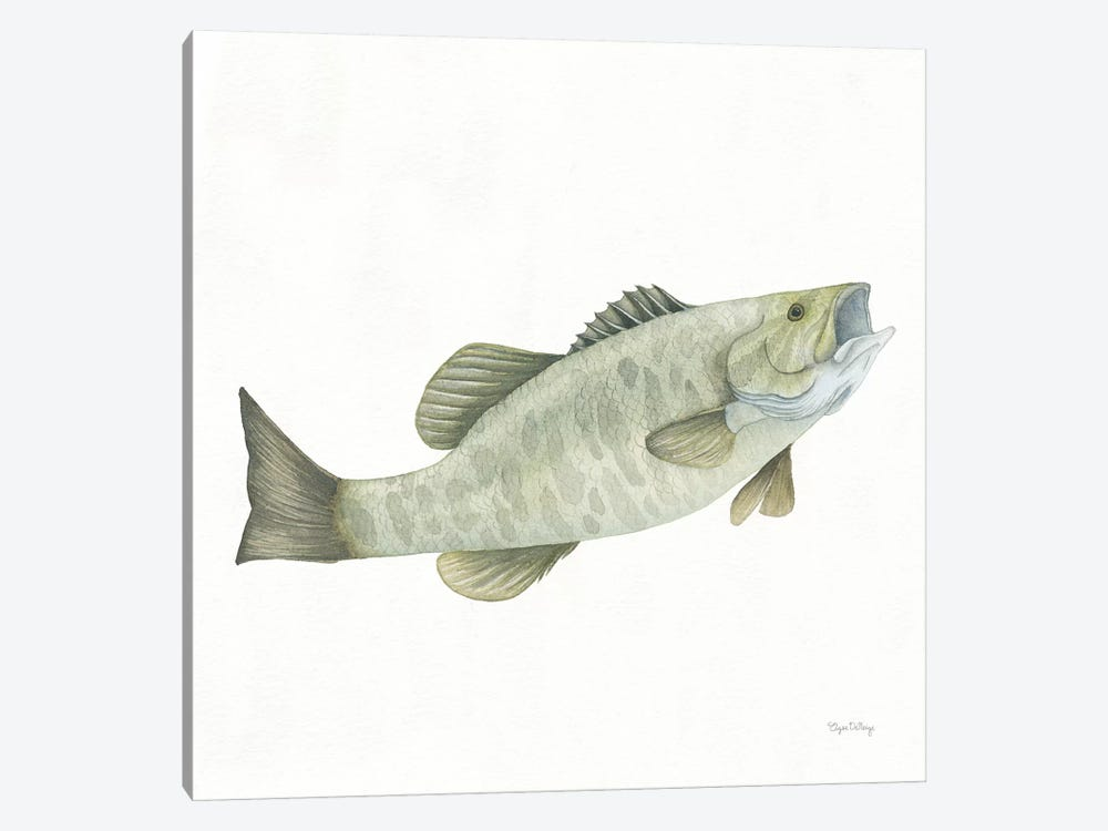 Gone Fishin': Small Mouth Bass by Elyse DeNeige 1-piece Canvas Wall Art