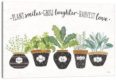 Fine Herbs I Canvas Art Print