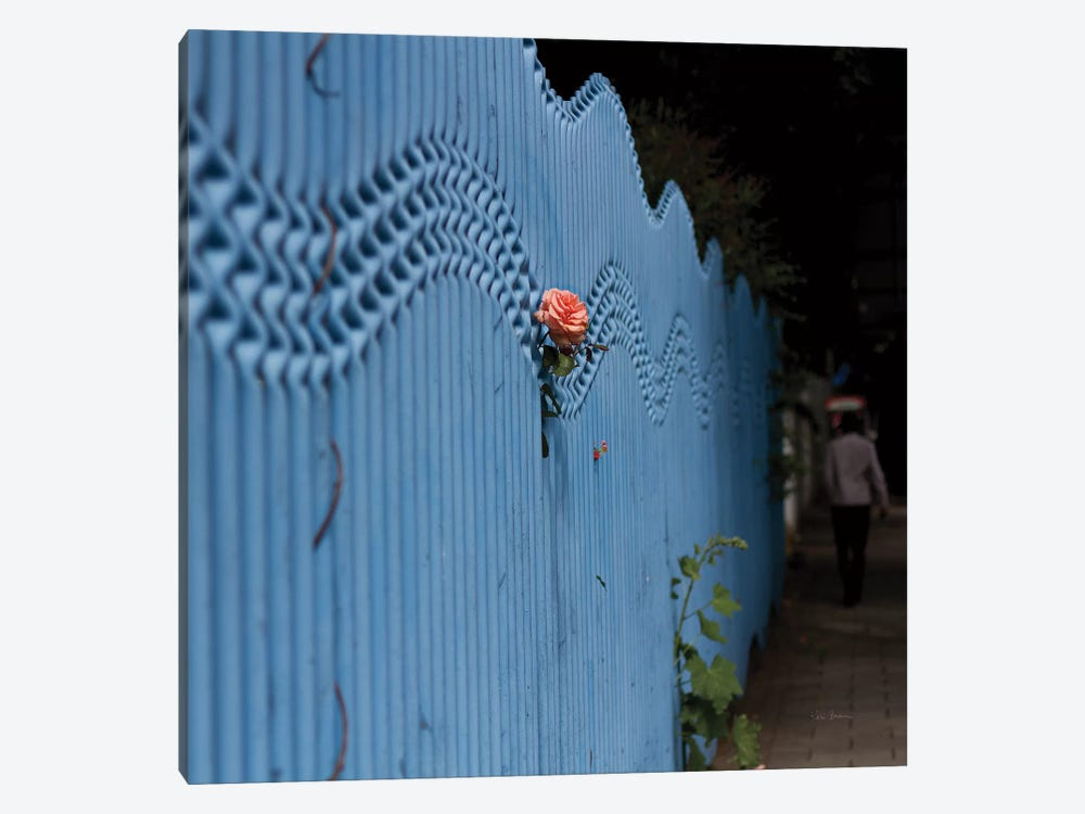 Rose On Pentonville by Keri Bevan 1-piece Canvas Wall Art