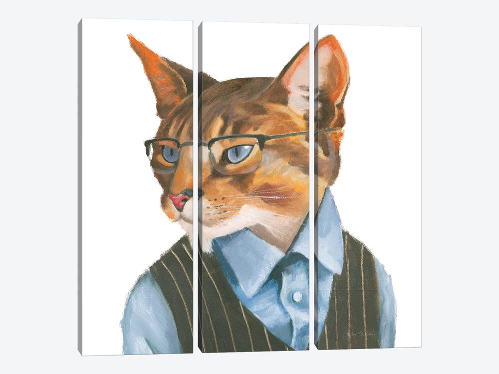 Cattitude IV by Myles Sullivan 3-piece Canvas Print
