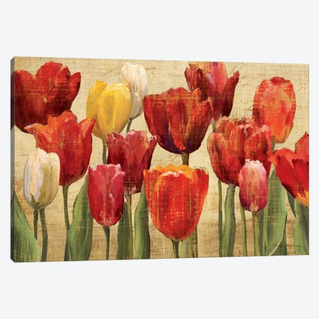 Tulip Fantasy on Cream  Canvas Print #WAC857} by Marilyn Hageman Canvas Wall Art