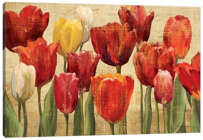 Tulip Fantasy on Cream Canvas Art Print