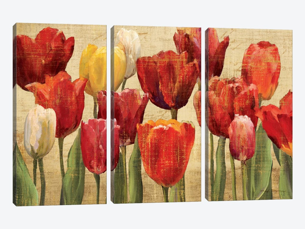 Tulip Fantasy on Cream  by Marilyn Hageman 3-piece Canvas Print