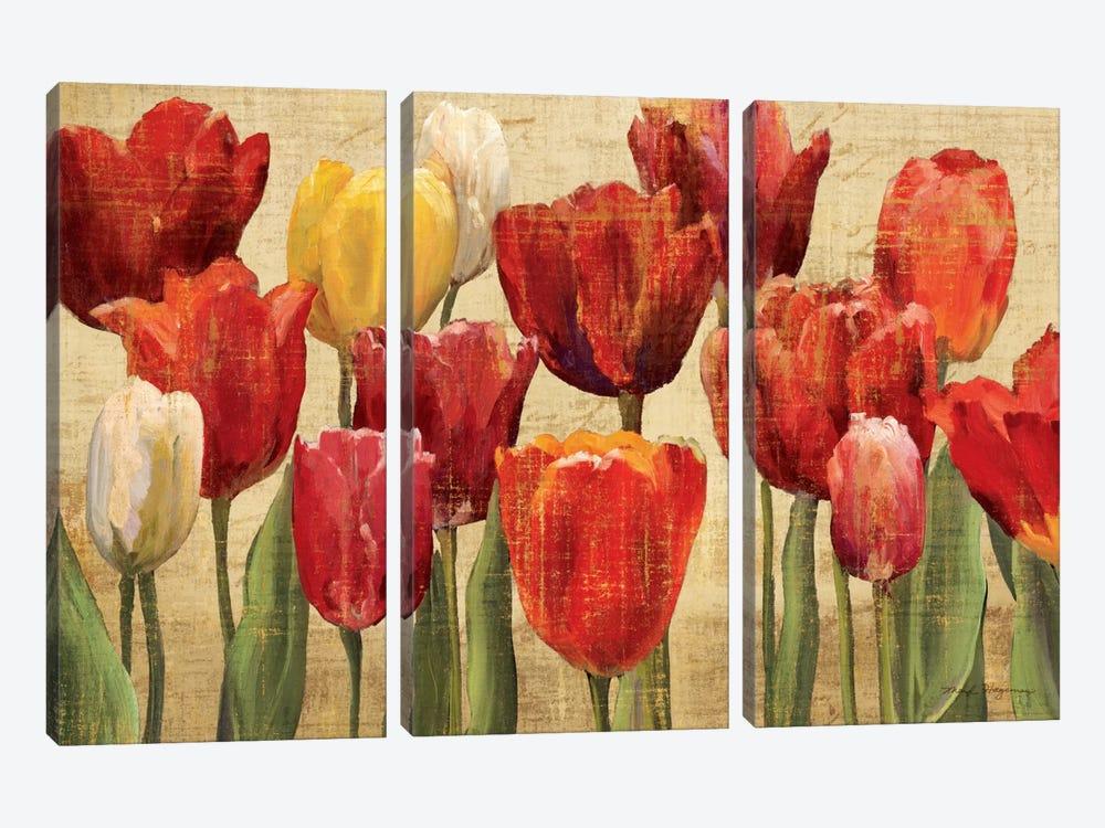 Tulip Fantasy on Cream  by Marilyn Hageman 3-piece Canvas Print