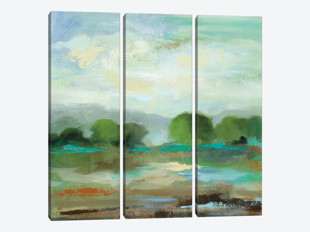 Unexpected Clouds I 3-piece Canvas Art