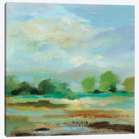 Unexpected Clouds II Canvas Print #WAC8619} by Silvia Vassileva Canvas Artwork