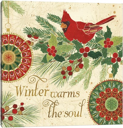 Winter Feathers VI Canvas Art Print