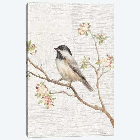 Black Capped Chickadee, Vintage Canvas Print #WAC8674} by Danhui Nai Canvas Art Print