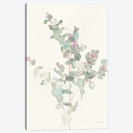 Eucalyptus II 3-Piece Canvas #WAC8675} by Danhui Nai Art Print