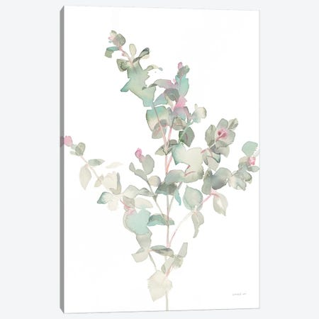 Eucalyptus II, White Canvas Print #WAC8676} by Danhui Nai Canvas Print