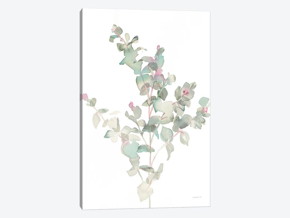 Eucalyptus II, White by Danhui Nai 1-piece Canvas Art