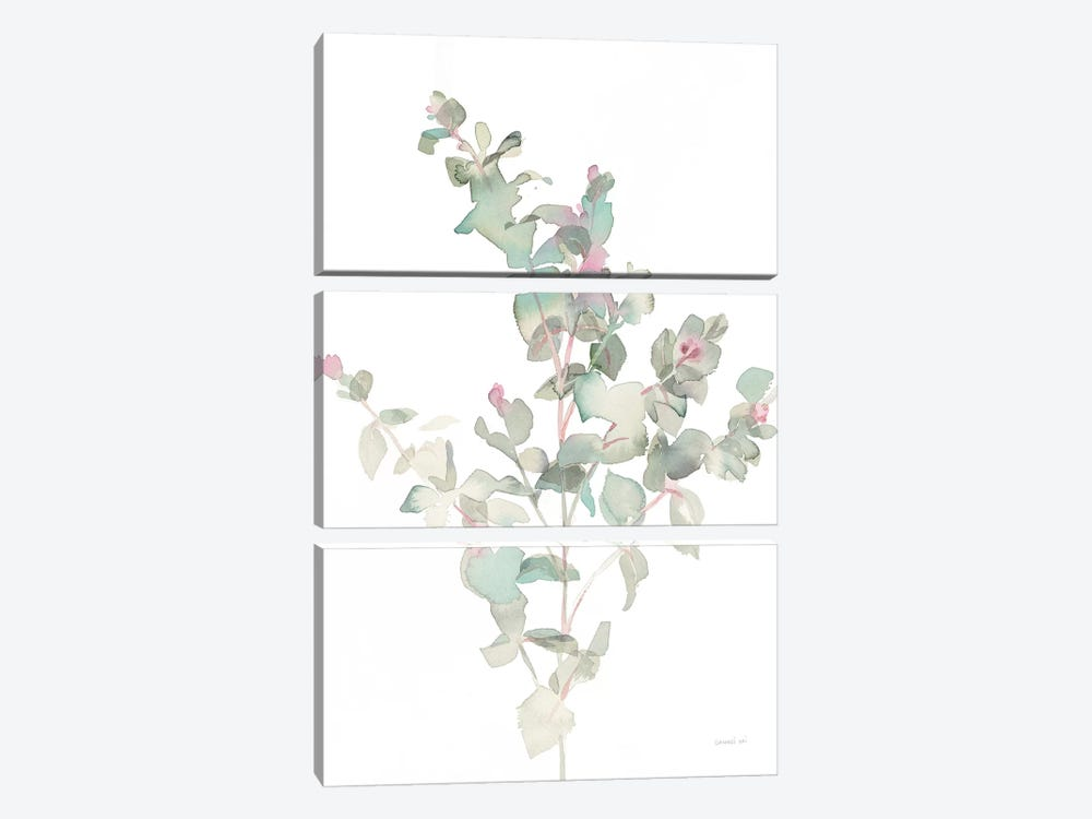 Eucalyptus II, White by Danhui Nai 3-piece Canvas Artwork