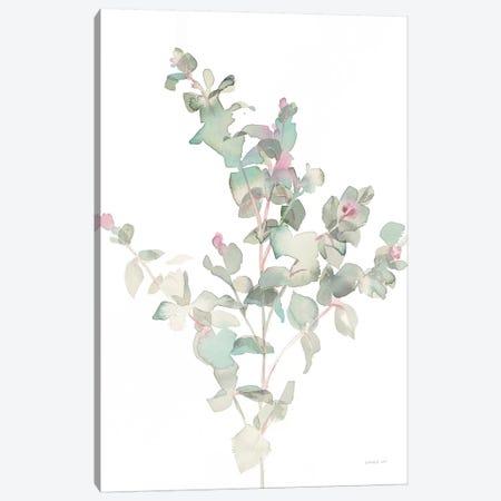 Eucalyptus II, White 3-Piece Canvas #WAC8676} by Danhui Nai Canvas Print