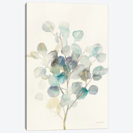 Eucalyptus III 3-Piece Canvas #WAC8677} by Danhui Nai Art Print