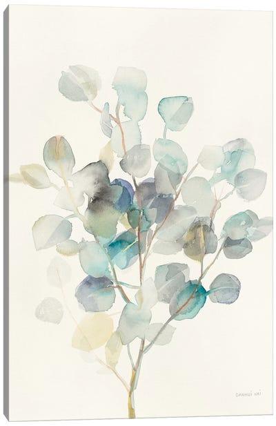 Eucalyptus III Canvas Art Print