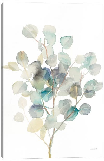 Eucalyptus III, White Canvas Art Print