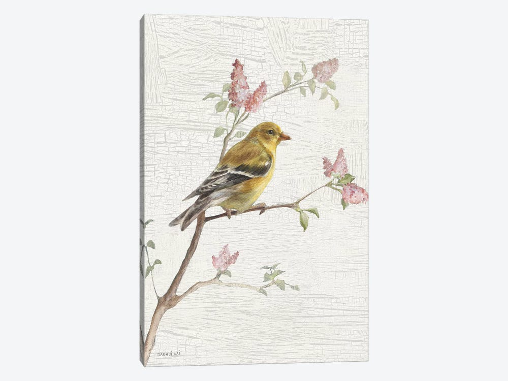 Female Goldfinch, Vintage by Danhui Nai 1-piece Canvas Print