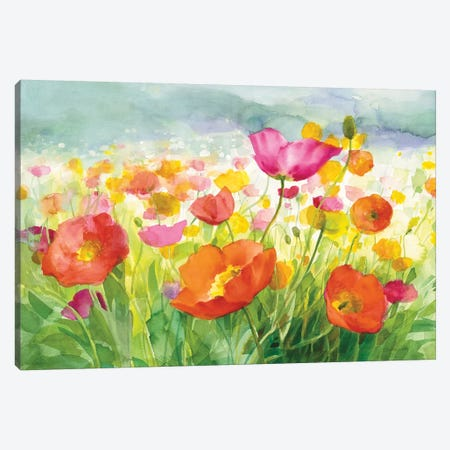 Meadow Poppies Canvas Print #WAC8680} by Danhui Nai Canvas Print