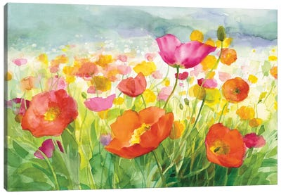 Meadow Poppies Canvas Art Print
