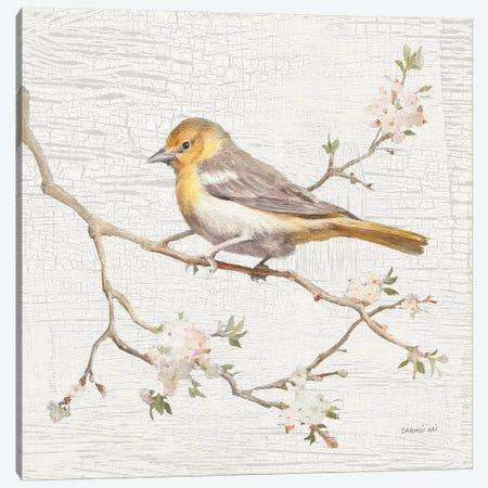 Northern Oriole, Vintage Canvas Print #WAC8681} by Danhui Nai Canvas Art Print