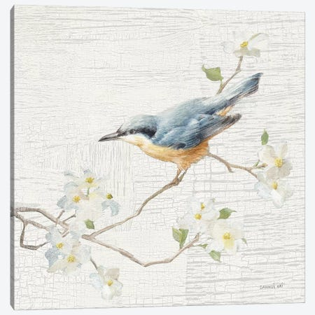 Nuthatch, Vintage Canvas Print #WAC8682} by Danhui Nai Art Print