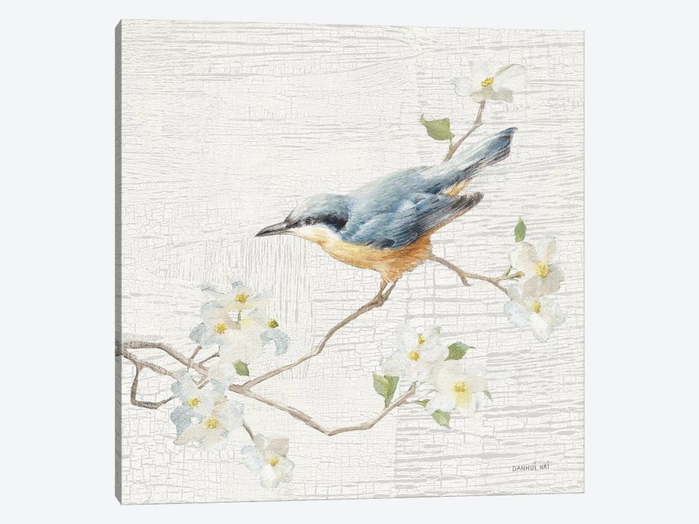 Nuthatch, Vintage by Danhui Nai 1-piece Art Print