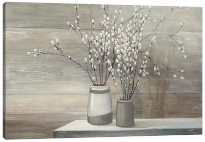 Pussy Willow Still Life Gray Pots Canvas Art Print