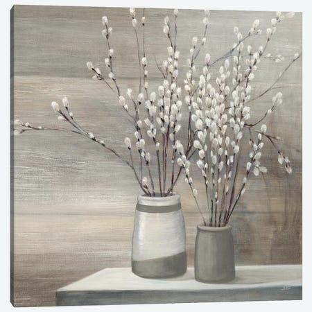 Pussy Willow Still Life Gray Pots Crop Canvas Print #WAC8692} by Julia Purinton Canvas Wall Art