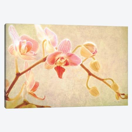 Perfume Canvas Print #WAC8704} by Keri Bevan Canvas Print