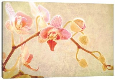 Perfume Canvas Art Print