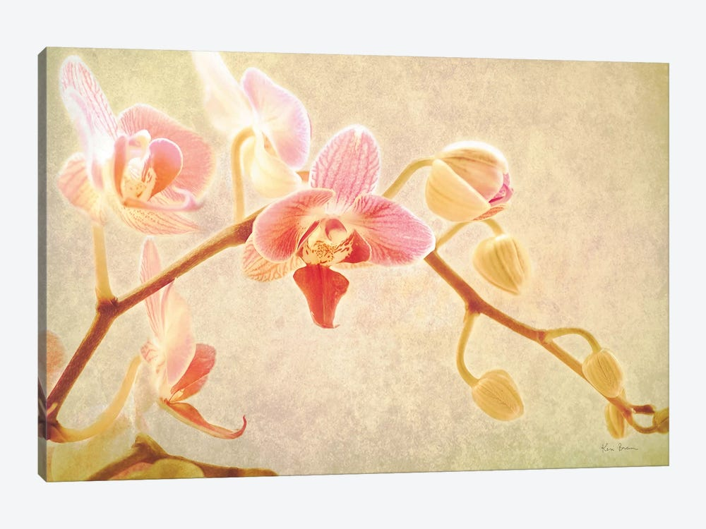 Perfume by Keri Bevan 1-piece Canvas Art