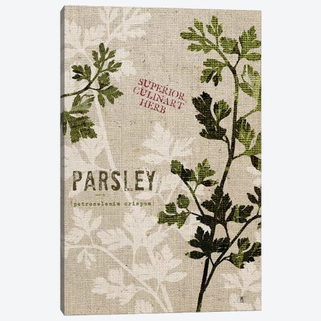 Organic Parsley, No Butterfly Canvas Print #WAC8735} by Studio Mousseau Canvas Art
