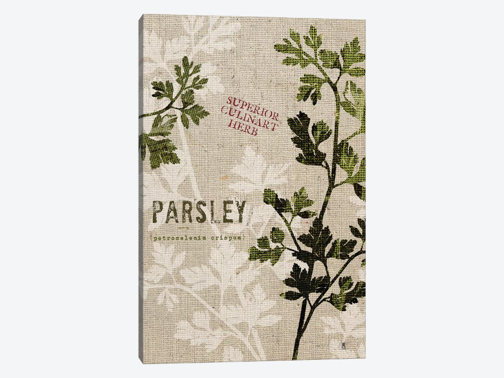 Organic Parsley, No Butterfly by Studio Mousseau 1-piece Canvas Wall Art