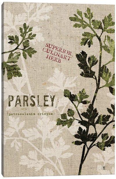 Organic Parsley, No Butterfly Canvas Art Print