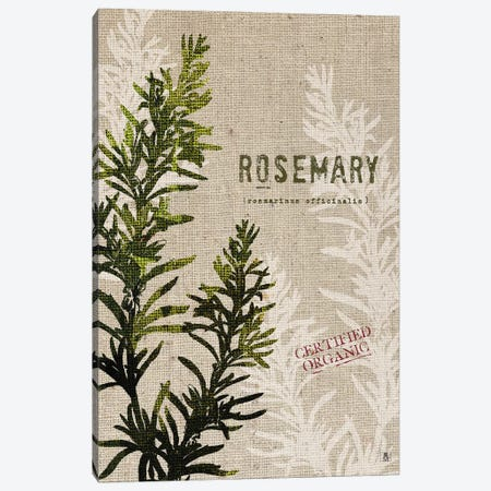 Organic Rosemary, No Butterfly Canvas Print #WAC8736} by Studio Mousseau Canvas Artwork