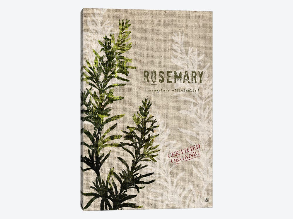 Organic Rosemary, No Butterfly by Studio Mousseau 1-piece Art Print